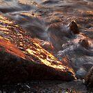 Golden Shore by Heather Thorsen
