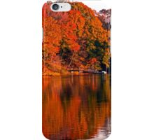 Colorful Shores iPhone Case/Skin