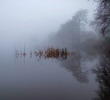 Reflections on the loch in the fog 1 by Kim  Ayres