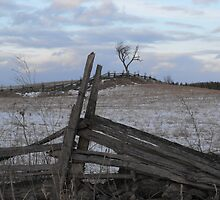Climbing Fences To Frozen Fields by Tracy Wazny