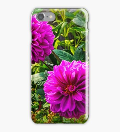 Dahlia Daze iPhone Case/Skin