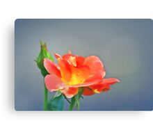 The Softest Rose Canvas Print
