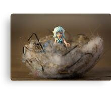 Elf In a Nest Canvas Print