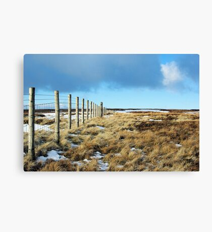 Northumberland Fence Canvas Print