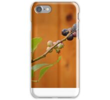 Berry Branch iPhone Case/Skin