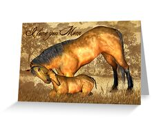 Mom Valentine's Day Card With Horse And Foal  Greeting Card