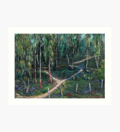 Eucalyptus Grove Art Print