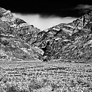 Titus Canyon. Death Valley National Park, California by Jeff Blanchard