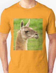 Young Guanaco T-Shirt