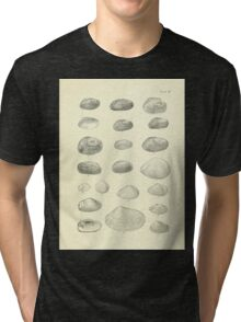 Manual of the New Zealand Mollusca by Henry Sutter 1915 0245 Diplodon Tri-blend T-Shirt