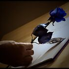 Goodbye my lover ... by MehrajAnik