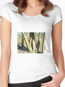 Tree trunk Women's Fitted Scoop T-Shirt