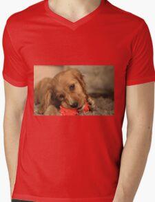 Golden Cocker Spaniel Puppy Mens V-Neck T-Shirt