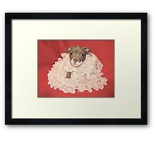 Does This Make Me Look Fat? Framed Print