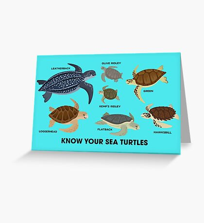 Know Your Sea Turtles Greeting Card