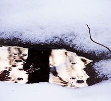 Snow Mirror by Ashley Frechette