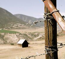 Forbidden Land - Kamloops, British Columbia by Jennifer Mendieta