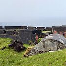 Lower Cannons of Ft. Thomas, St. Kitts by Memaa