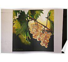 Beauty on Vineyard. Poster