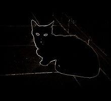 Black cat in the darkness by MissBeloved