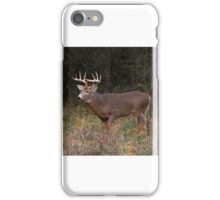 On the hunt - White-tailed Buck iPhone Case/Skin