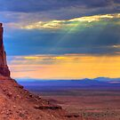 Navajo Lands by Bill Wetmore