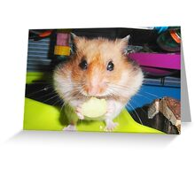 'The apple is all MINE....' Greeting Card