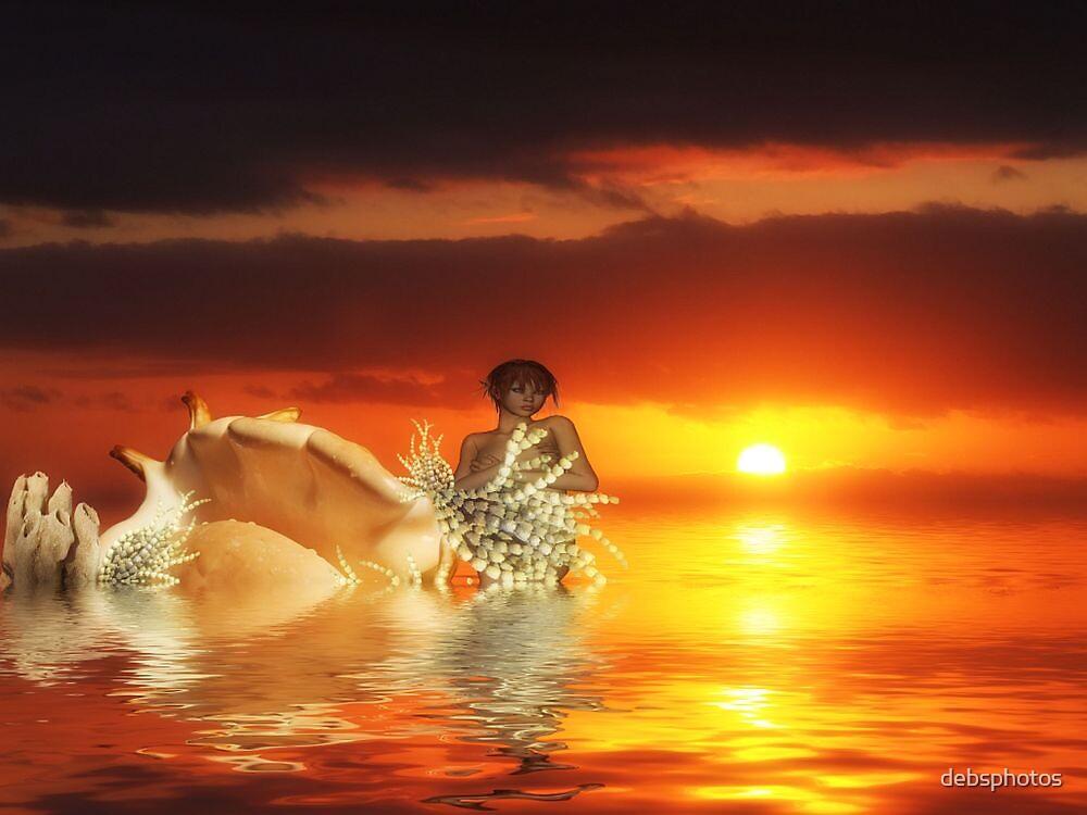 """""""Ocean Life"""" by debsphotos"""