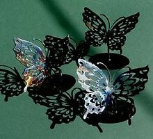 Butterfly Paperweights by steven4256