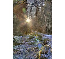 Carrie Yellow Walk near Kinloch Rannoch Photographic Print