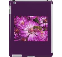 Ruschia macowanii pollinated by a Flower Bee iPad Case/Skin
