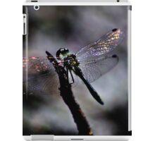 Wings & Colours iPad Case/Skin