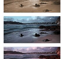 Changing Tones Triptych by Warren. A. Williams