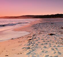 Dawn at the Bay of Fires by Robin Young