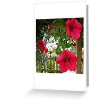 Red Petunia Greeting Card