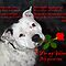 Staffie Valentine by Elaine Teague