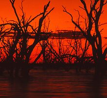 Menindee Sunset by JennyMac