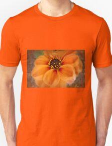 Captive Heart Unisex T-Shirt