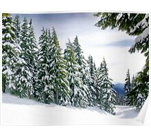 Oregon Winter Poster