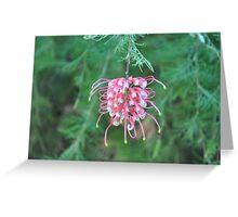 Lonley bloom Greeting Card