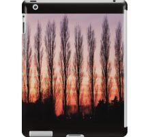 Winter Evening Sky iPad Case/Skin
