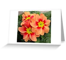 Flower of Love. Greeting Card