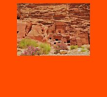 Dwellings in Petra Unisex T-Shirt