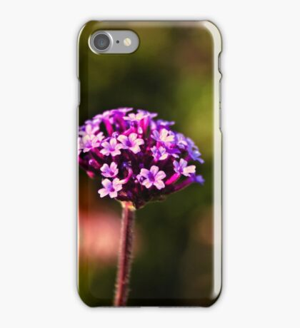 Pretty in Pink iPhone Case/Skin