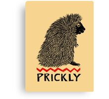 Prickly Porcupine Canvas Print