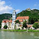 Along The Beautiful Danube River by Lanis Rossi