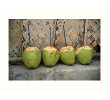 Coconut drinks Art Print
