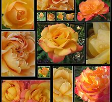 Rose Collage by art2plunder