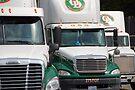 ODFL Freightliner Trio by John Schneider