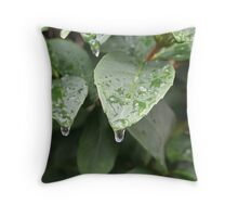 Sleet forming on ligustrums Throw Pillow